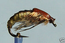 1 x Mouche de peche Nymphe Sedge H12/14/16 nymph fly fishing fliegen mosca