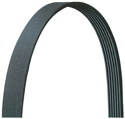 Dayco 5060915DR Serpentine Belt