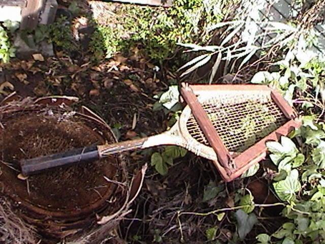 1940 S Raquette de tennis KENT  noir  vintage avec presse