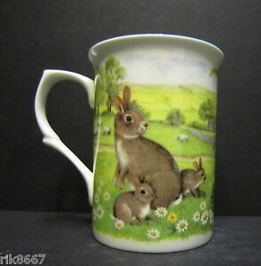 Wild-Rabbits-Fine-Bone-China-Mug-Cup-Beaker