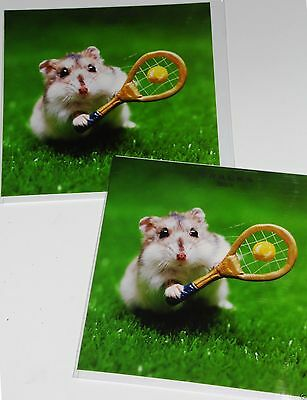 Anyone For Tea Hamster Framed Photo Art Greeting Card Blank Inside Any Occasion