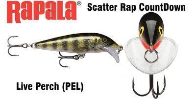 Rapala Scatter rap Countdown 7cm