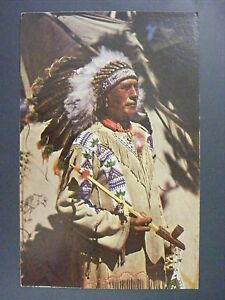 indian chief running horse headdress peace pipe vintage color rh ebay com Indian Chief Skull Logo Indian Chief Skull Logo