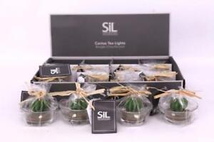 Sets-Small-Cactus-Tea-light-Candles-dans-Glass-pots-Party-Wedding-table-Favours