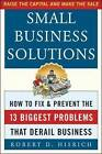 Small Business Solutions: How to Fix and Prevent the 13 Biggest Problems That Derail Business by Robert D. Hisrich (Paperback, 2004)