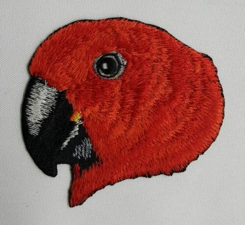 Eclectus Parrot Embroidered Patch