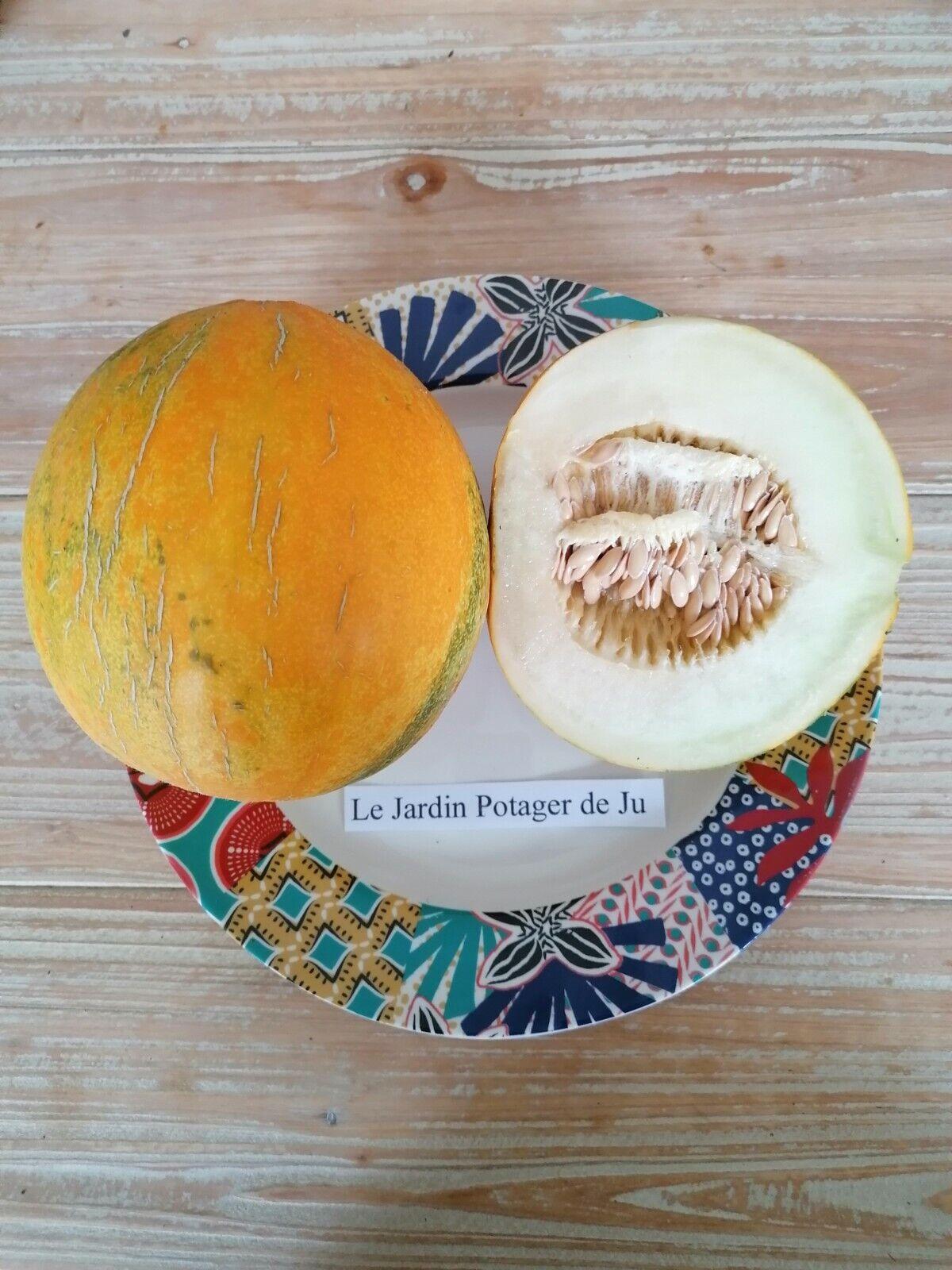 10 Seeds melon Kazakh Sensitive Darker Dryness 0,5 To 1,5 KG Rustic Juicy