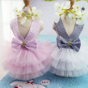 Small-Pet-Dog-Cat-Summer-Lace-Skirt-Princess-Tutu-Dress-Puppy-Clothes-Apparel