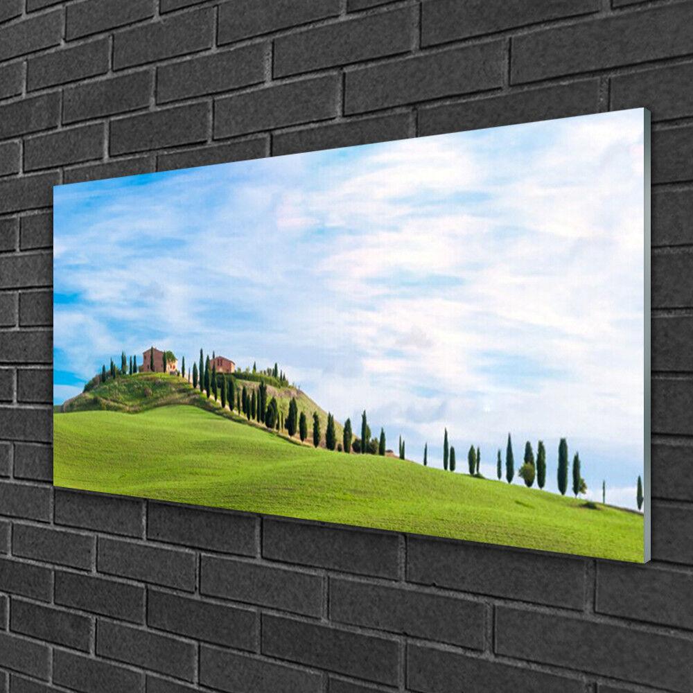 Image sur verre Tableau Impression 100x50 Paysage Arbres Prairie