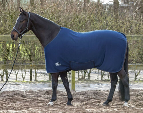 Harry/'s Horse sous couverture thermoliner écurie plafond POLYVISCOSE avec Polyfill-remplissage