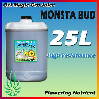 Hydroponics Ozimagic Grow Juice MONSTA Bud 25L Nutrient For  Flowering Stage