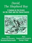 David, the Shepherd Boy: A Cantata in Ten Scenes for the Choir and the Choral Society by Hezekiah Butterworth (Paperback / softback, 2003)
