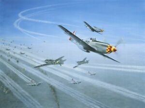 TOP-COVER-by-Gerald-Coulson-signed-by-three-USAAF-Aces