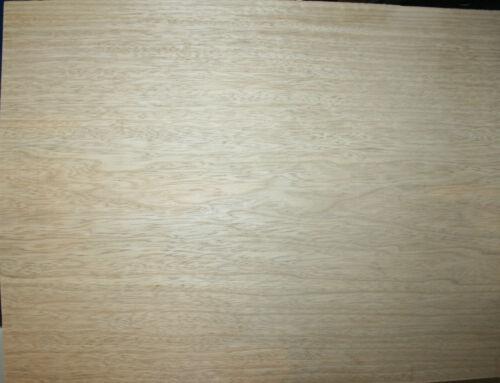 Body Blank Korina Corina Limba 44,5 mm zweiteilig ca 50 x  35-38 cm Gitarrenbau