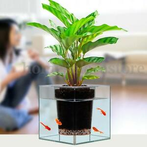Clear Aquarium Self-watering Pot Planter Plant Fish Tank Vase Home Decor 12cm | eBay