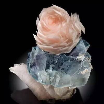 crystallandus