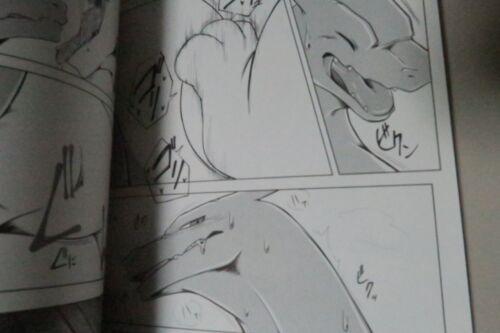 furry Dragon kemono Hen to Ouji Doujinshi POKEMON Lugia X Charizard A5 26pages
