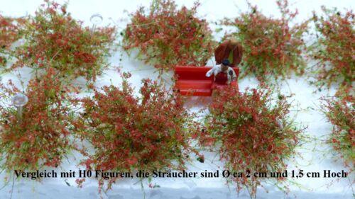 Sträucher 10 Stück H0//TT Maigrün rot blühend