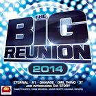 The Big Reunion 2014 by Various Artists Audio CD Discs 1 Pop UK SELLER