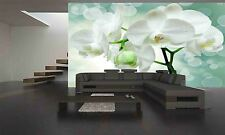 Closeup Of Orchid Flower Wall Mural Photo Wallpaper GIANT DECOR Paper Poster
