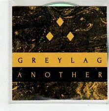 (FN80) Greylag, Another - 2014 DJ CD