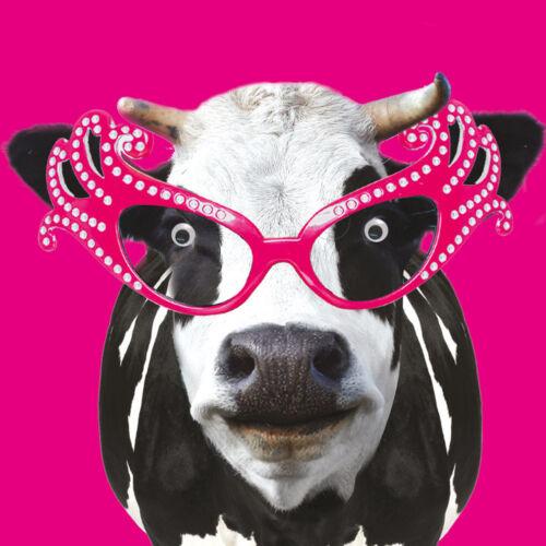 Moo Moo vache googlies CARTE D/'ANNIVERSAIRE pistes vacille yeux CARTES DE VŒUX