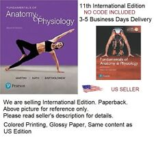 New a&P Titles by Ric Martini and Judi Nath: Fundamentals of Anatomy and Physiology by Judi L. Nath, Frederic H. Martini and Edwin F. Bartholomew (2017, Hardcover / Mixed Media)