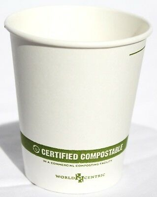 Compostable 16 oz Coffee//Hot Cups 1,000 Cups! Holiday Print