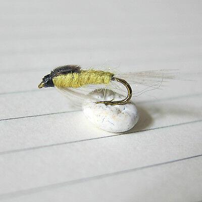 Lot 3 Mouche pêche truite Nymphe Gammare// Pesca Mosca ninfas tungsteno H 12 14
