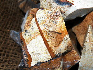 2000-Carat-Lots-of-Picture-Jasper-Rough-Plus-a-FREE-Faceted-Gemstone
