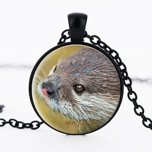 Otter pendant photo glass dome black chain pendant necklace ebay image is loading otter pendant photo glass dome black chain pendant aloadofball Images