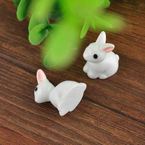 2 PCS//set Mini Rabbit Miniature Figurine Ornament Plant Pot Fairy Garden Decor