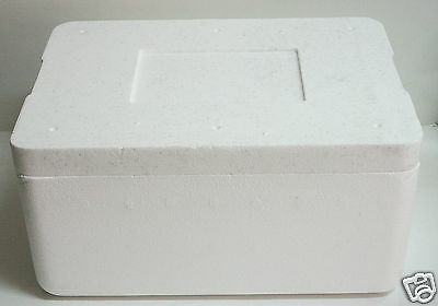 3 Lot Insulated Styrofoam Shipping Cooler Perfect Plants, Food, Fragile Items