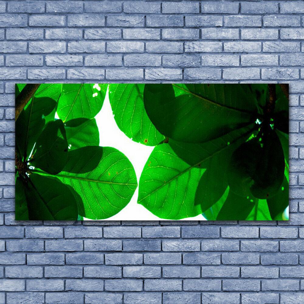 Print Print Print on Glass Wall art 140x70 Picture Image Leaves Floral 70ce9b