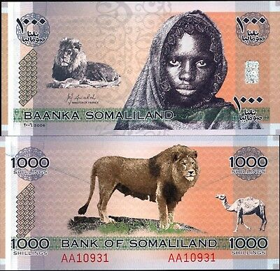 Somaliland 1000 Shillings Banknote P-20 NEW 2014//2016 UNC New Sign and Date