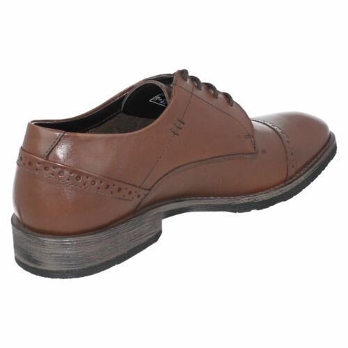 Up Craig Lace Formal Brown Leather Shoes Luganda Hush Puppies Mens qt6O4xa86