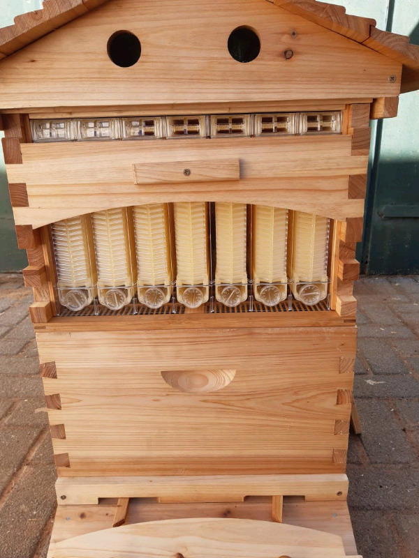 Bee hive for sale R4500
