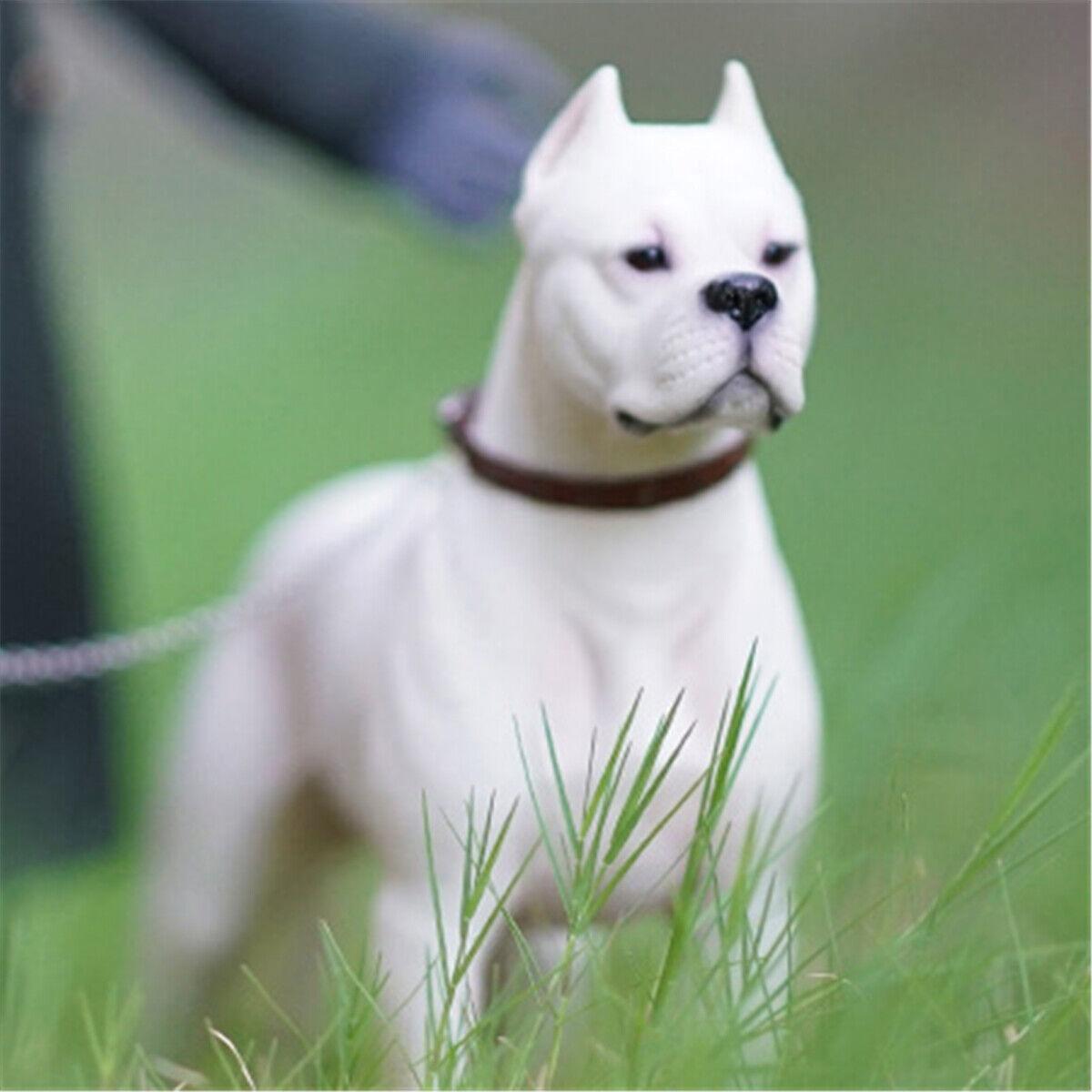 M7 1 6 Dogo silverinos Statue Dog Pet Figure Animal Model Decoration Toy Gift