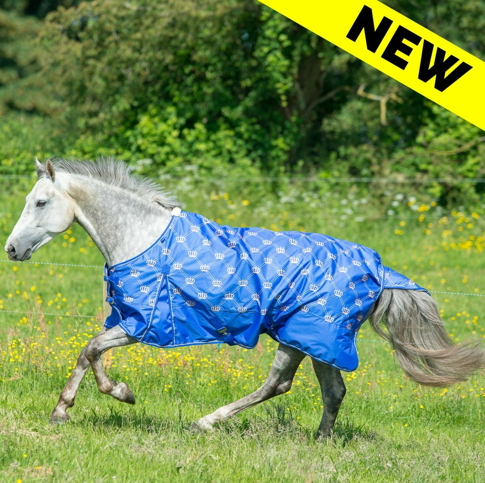 Gallop Monarch Lightweight Turnout Rug- No Fill - Mid Season Spring Horse