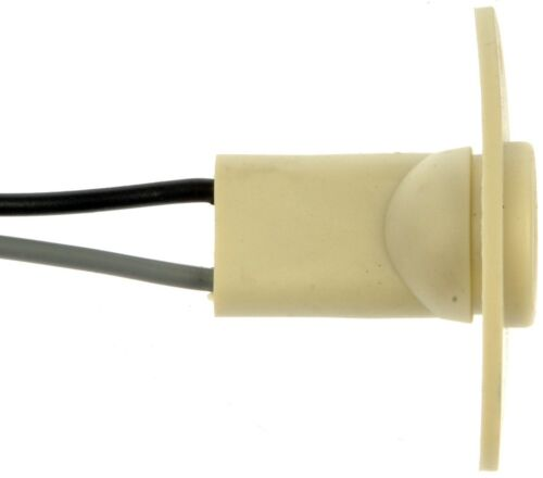 License Lamp Socket Dorman 85889