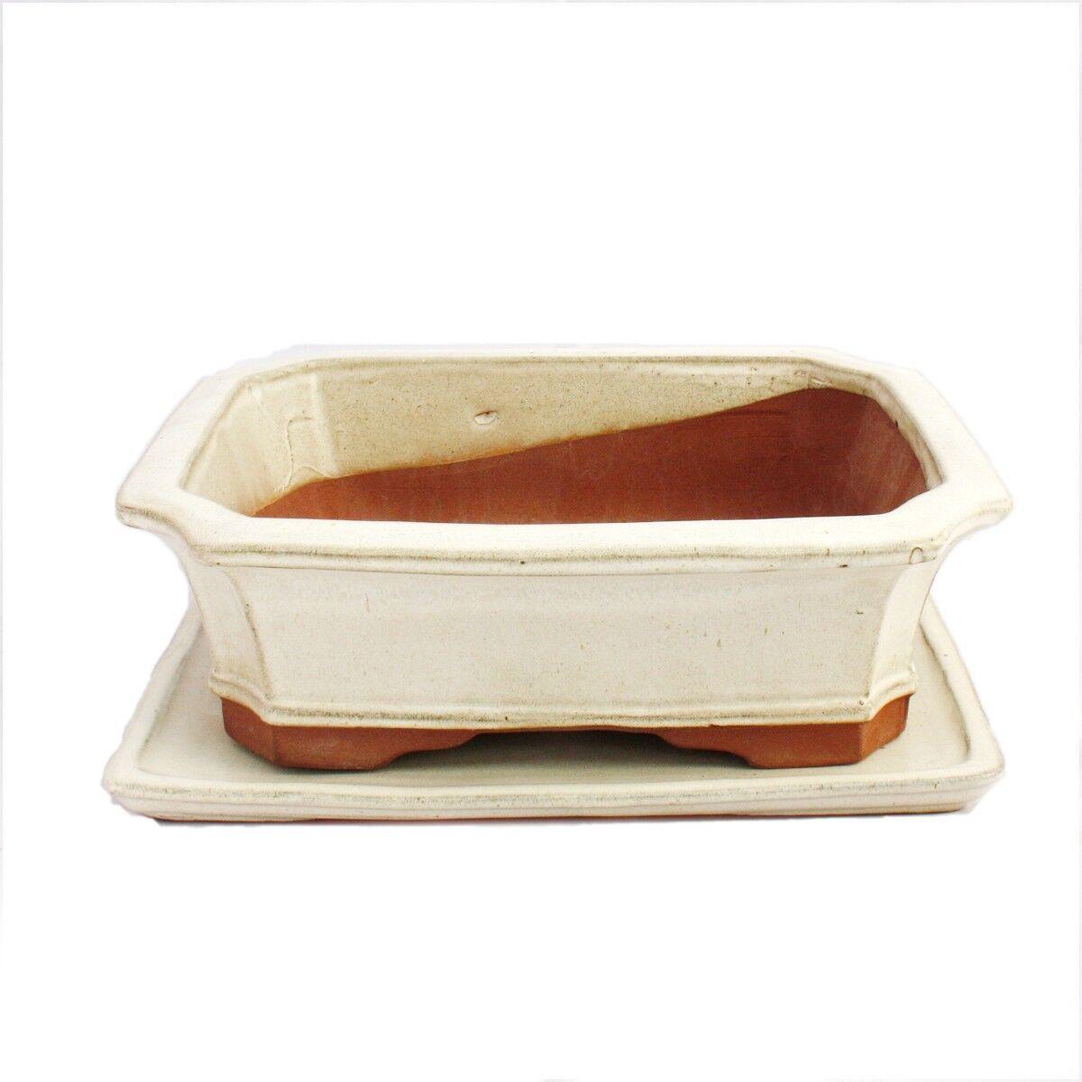 Bonsai-cásCochea con bajo platos talla 5-Color beige claro-cuadrada-modelo g4-l 31cm-B