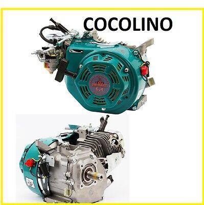 mit Pleuelager kart engine moteur Kartmotor Motor DM 200cc Evo2 5KW