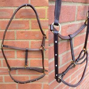 Horse Leather Headcollar