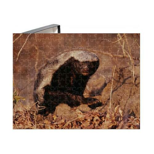 of Honey Badger 1303078 Photo Puzzle 252 Pieces Ratel