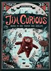 Jim Curious von Matthias Picard (2013, Gebundene Ausgabe)