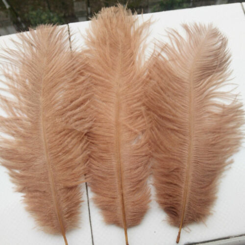 7/'/'   LATTEE   FREE Postage. FEATHERS 5 x Ostrich New Colour 5/'/'
