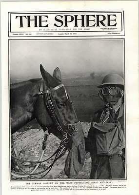 1918 Horse And Rider Wearing Gas Masks German Attacks Cambrai Map