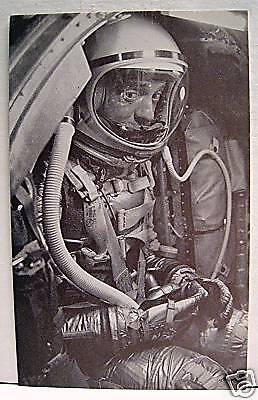 Mercury Freedom 7 Al Shepard Astronaut Exhibit Card #10