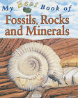 My Best Book of Fossils, Rocks and Minerals by Chris Pellant (Paperback, 2002)
