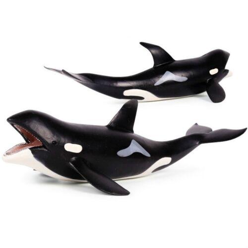 Marine Biological Model Ocean Life Toy Education Sea Animal for Child Kids Decor